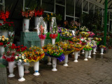 Flower Market off Parcul Catedralei