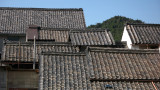Overlapping rooftops in Ishin-chō