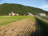 Fields stretching towards the Azuchi museum area