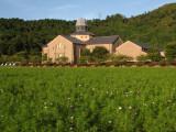 Prefectural Azuchi Castle Archaeological Museum