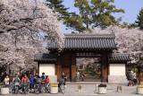 Gate into Zezejōshi-kōen (Old Zeze Castle Park)