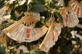 Charms hanging at Chion-ji