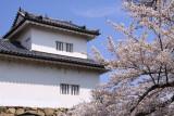 Tenbin-yagura and sakura