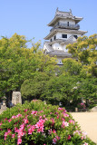 Azaleas with the donjon of Imabari-jō