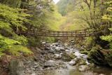 Kazura-bashi crossing the gorge