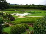 Seiden field and tea plantations
