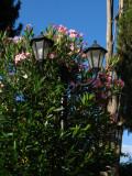 Flower-wreathed lantern