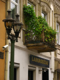 Streetlamp and ivy-adorned balcony