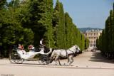 Fiaker - Schloß Schönbrunn
