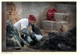 Tannery - 2