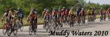 muddy_waters_2010