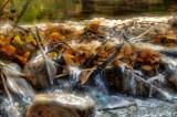 Leaf Dam