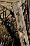 Fence peg holes