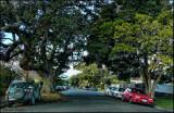 Oneils Avenue, Takapuna, North Shore, Auckland