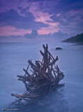 Driftwood Flame
