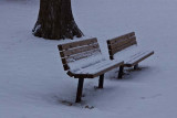 Lonely Winter Benches