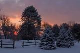 Backyard Sunrise - January 12th