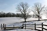 Winter's Open Space