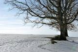 Hilltop in Winter