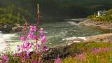 Laksforsen Waterfall area near Mosjoen