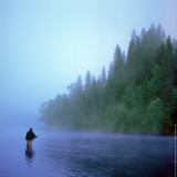 The Early Morning Fishing