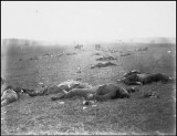 Federal Dead on the Field of Battle of First Day Gettysburg Pennsylvania - Mathew Brady, 1863