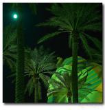 Egyptian Night /Luxor Sphinx at full moon night/, Las Vegas