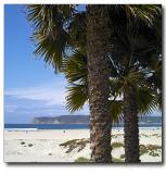 Coronado Island beach, San Diego