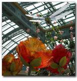Botanical Garden, Bellagio hotel, Las Vegas