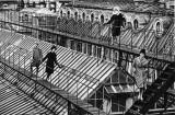 """""""Jardin des Modes"""", Paris, 1961 © Jeanloup Sieff"""