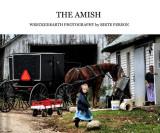 BOOK AMISH.JPG