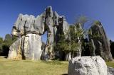 The Stone Forest (Shi Lin) ¥ÛªL