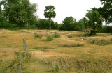 The Killing Fields near Phnom Penh