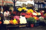 Lima. Flower market