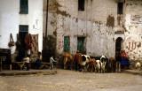 Piso. a village near Cuzco