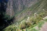 Way up to Machu Picchu