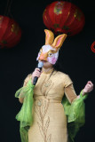 2011 The Year of the Rabbit