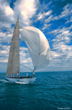 Voiles Antibes French Kiss 4746.jpg