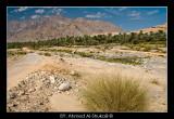 Wadi Dyqah