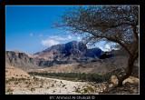 Wadi Al-Arabeen