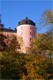 Uppsala Castle in autumn colours