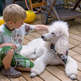 10/8 That kiddo knows how to scratch a dog.