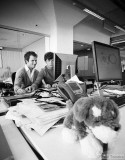 At work in the offices of Ebay - Marktplaats The Netherlands