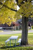 Fall at Caldwell Park _DSC0384.jpg