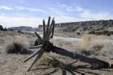 Massacre Rocks State Park - wagon wheel and Snake River _DSC2055.JPG
