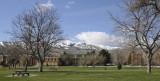 Springtime at ISU _DSC4411.jpg