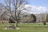 Springtime at ISU _DSC4415.jpg