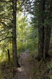 Scout Mountain Nature Trail _DSC2497.jpg