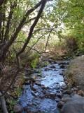 City Creek P1020667.jpg