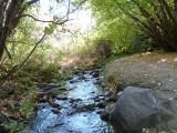 City Creek P1020672.jpg